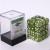 Dice Cube - Set 36 Dadi D6 12mm - Marbled Grass Green