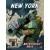 Neuroshima Hex! 3.0: New York