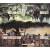 Pagan: Schicksal Von Roanoke - Spielmatte